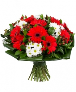 Serenada - Gėlių fėja - Gėlių pristatymas į namus