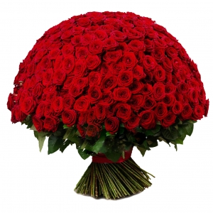 301 raudona rožė - Gėlių pristatymas į namus Mažeikiuose