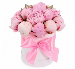 Bijūnai dėžuteje - Gėlių fėja - Gėlių pristatymas į namus