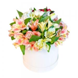 Švelni dėžutė - Gėlių pristatymas į namus Klaipėdoje