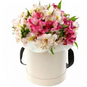 Alstromerijos dėžutėje - Gėlių pristatymas į namus Alytuje