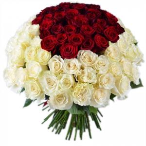 Baltos rožės su raudonom viduryje