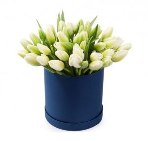 Baltos tulpės melynoje dėžutėje