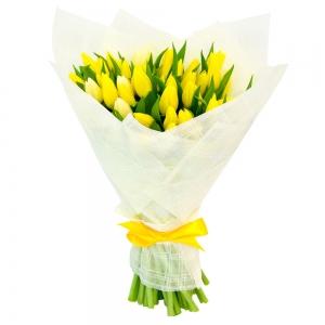 Geltonos tulpės - Gėlės į namus Vilniuje