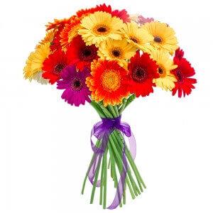 Gerberos Mix - Gėlių fėja - Gėlių pristatymas į namus