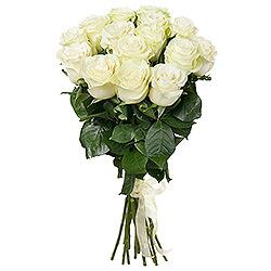 Klasika - Baltos rožės 60-70cm - Gėlių pristatymas į namus Ukmergėje