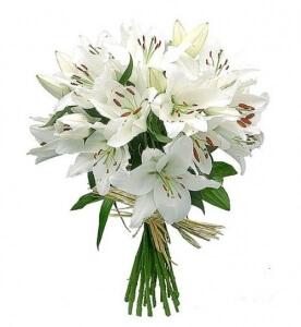 Lelijos - Gėlių pristatymas į namus Klaipėdoje