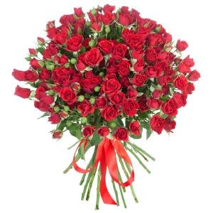 Raudonos smulkiažiedės rožės