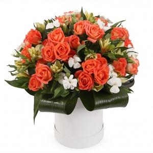 Oranžinė svajonė - Gėlių pristatymas į namus Ukmergėje
