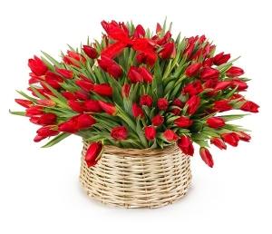 Pavasario daina - Gėlės į namus Vilniuje