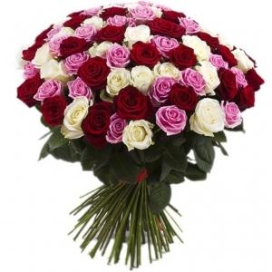 Raudonos, baltos ir rožinės rožės