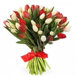 Raudonos ir baltos tulpės - Gėlės į namus Vilniuje