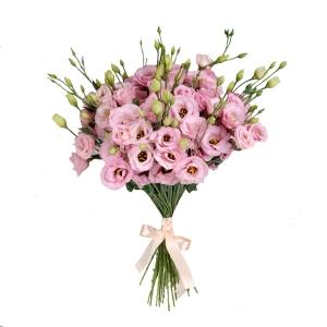 Rožinės eustomos - Gėlių pristatymas į namus Marijampolėje