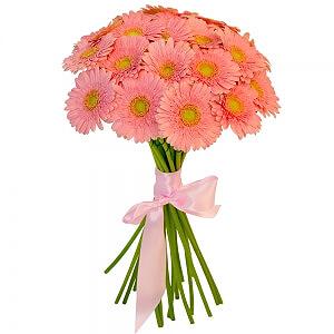 Rožinės gerberos - Gėlių pristatymas į namus Klaipėdoje