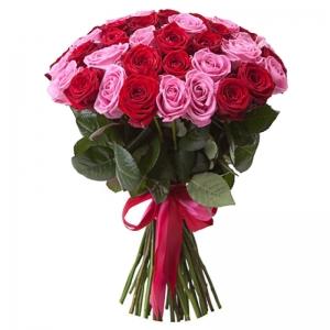 Rožinės ir raudonos rožės